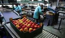 Επιπρόσθετη αύξηση του προϋπολογισμού κατά 40 εκ €, στην μεταποίηση γεωργικών προϊόντων και  διεύρυνση της βάσης του πίνακα κατάταξης  με τους δυνητικούς δικαιούχους στο 11.00
