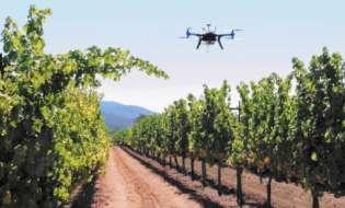 Ποιος ο ρόλος των drones στα χωράφια